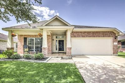 Pearland Single Family Home For Sale: 4605 Honey Creek Court