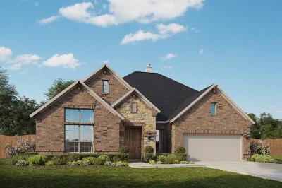 League City Single Family Home For Sale: 2306 Nobel Pass Lane