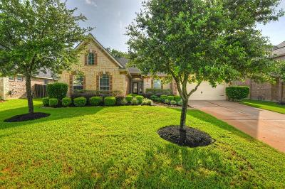 Spring Single Family Home For Sale: 18210 Stockton Springs Drive