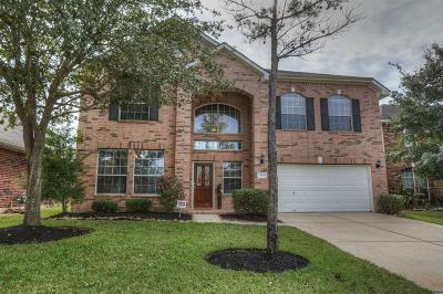 Tomball Single Family Home For Sale: 12831 Sherlock Acres Drive