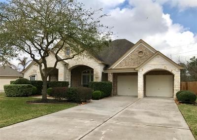 Houston Single Family Home For Sale: 14614 Wildwood Springs Lane
