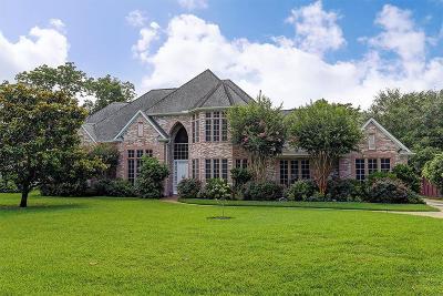 Fulshear Single Family Home For Sale: 5234 Whitmore Street