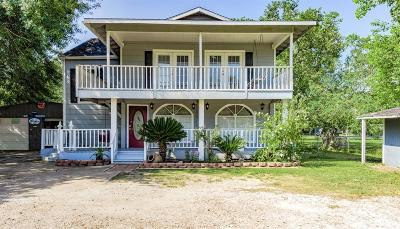 Alvin Single Family Home For Sale: 4673 County Road 399