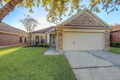League City Single Family Home For Sale: 3217 Mystic Port Lane