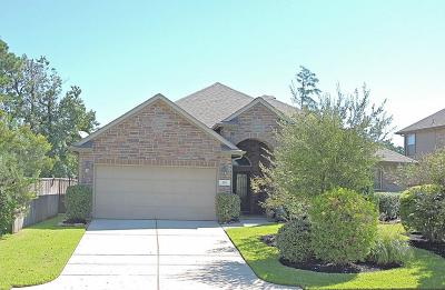 Single Family Home For Sale: 235 N Vershire Circle