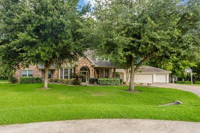 Fulshear Single Family Home For Sale: 32426 Oxbow Court