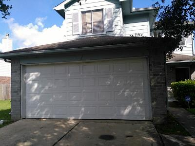 Houston Single Family Home For Sale: 4147 S Presidents Drive