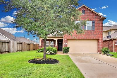 Katy Single Family Home For Sale: 6407 Black Bamboo Lane