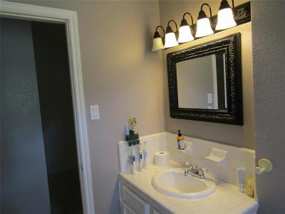 Houston Single Family Home For Sale: 15831 Calvin Road