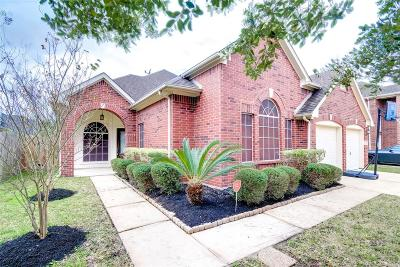 Houston Single Family Home For Sale: 8519 Split Branch Lane