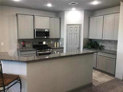 Texas City Single Family Home For Sale: 3122 Royal Albatross Drive