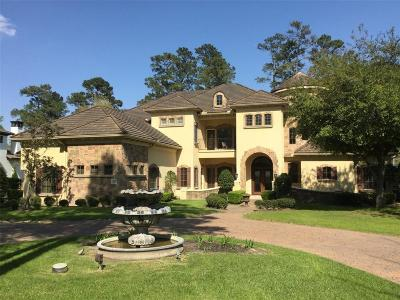 Conroe, Spring, The Woodlands Single Family Home For Sale: 10 Norlund Way