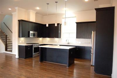 Houston Single Family Home For Sale: 2207 Chenevert Street