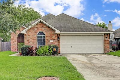 League City Single Family Home For Sale: 1015 Red River Street