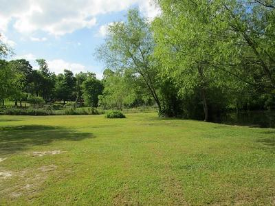 Conroe Farm & Ranch For Sale: 16903 Peach Creek Drive