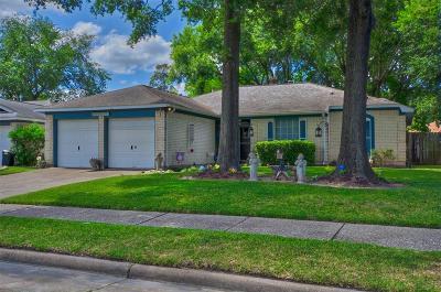 Houston Single Family Home For Sale: 13111 Tregarnon Drive