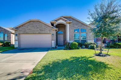 Tomball Single Family Home For Sale: 25418 Saddlebrook Champion Way