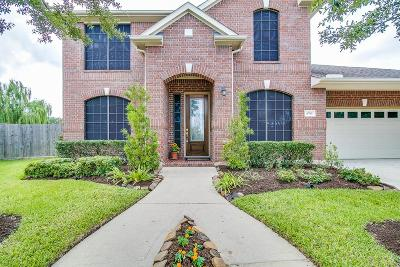 Sugar Land Single Family Home For Sale: 6703 Constatine Court