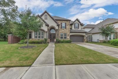 Sugar Land Single Family Home For Sale: 6138 Ashford Falls Lane