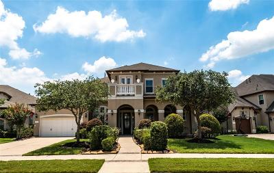 Sugar Land Single Family Home For Sale: 111 Chatham Avenue