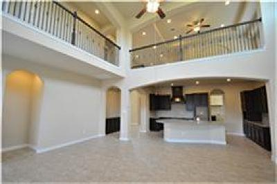 Katy Single Family Home For Sale: 25615 Buckley Bluff Lane