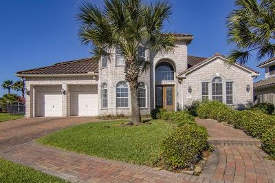 Houston Single Family Home For Sale: 10311 Fountain Shores Drive