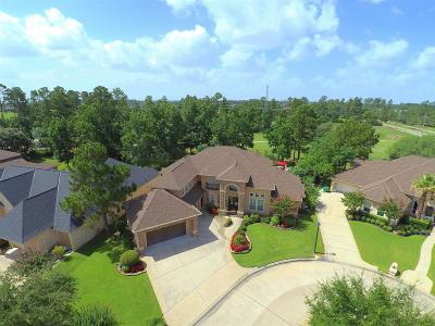Spring Single Family Home For Sale: 6215 Windrose Hollow Lane