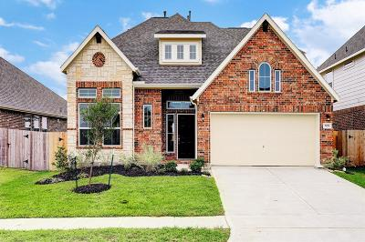 Alvin Single Family Home For Sale: 5178 Echo Falls Drive