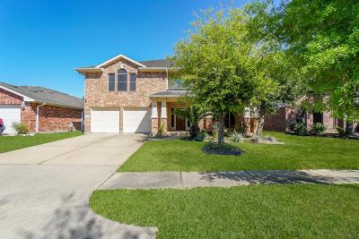 Houston Single Family Home For Sale: 9730 Beckwood Post Dr Drive