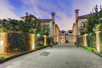 Houston Single Family Home For Sale: 5117 Tangle Lane Lane