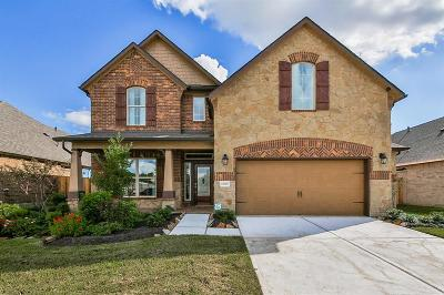 Pearland Single Family Home For Sale: 12808 Oak Falls Drive