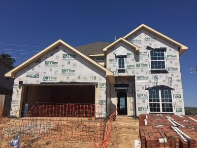 Katy Single Family Home For Sale: 2555 Pines Pointe Drive