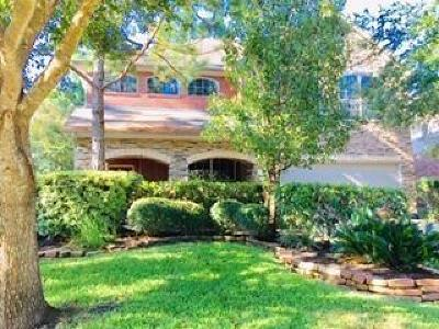 The Woodlands Single Family Home For Sale: 35 N Spinning Wheel Circle