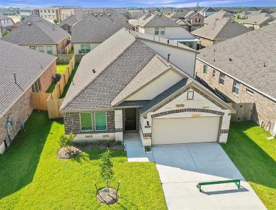 Alvin Single Family Home For Sale: 5185 Echo Falls Drive