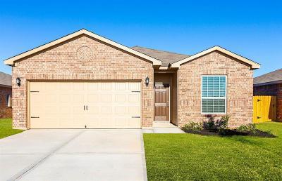 Katy Single Family Home For Sale: 164 Emma Rose Drive