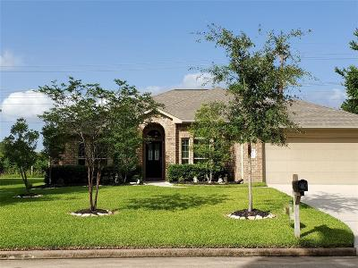 Montgomery Single Family Home For Sale: 3526 Stonehenge Drive