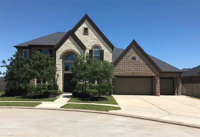 Katy TX Single Family Home For Sale: $662,990