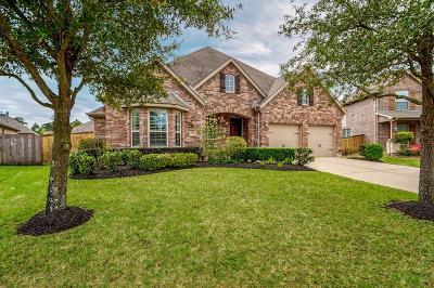 Porter Single Family Home For Sale: 25018 Hudson Knoll Drive