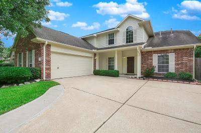 Houston Single Family Home For Sale: 8922 Path Green Drive