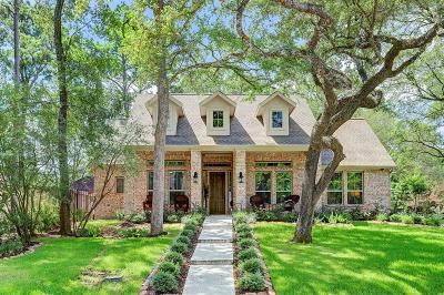 Houston Single Family Home For Sale: 10139 Briar Drive
