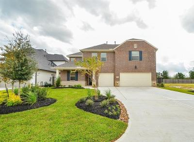The Woodlands Single Family Home For Sale: 35 Birch Canoe Drive