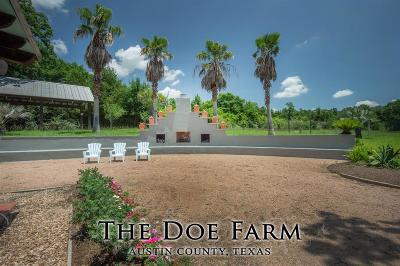 Bellville Farm & Ranch For Sale: 7048 Stokes Road