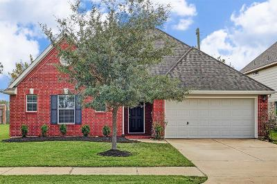 Pearland Single Family Home For Sale: 6102 N Patridge Drive