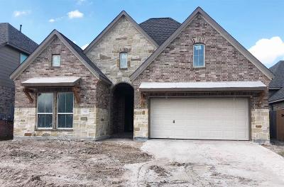 Spring Single Family Home For Sale: 3811 Withering Elm Lane