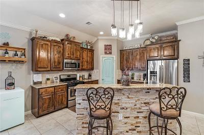 League City Single Family Home For Sale: 2216 Dove Haven Lane