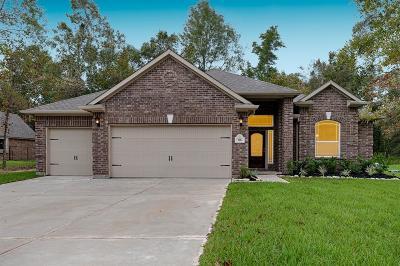 Single Family Home For Sale: 86 Runner Dr