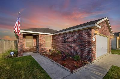 Single Family Home For Sale: 28830 Bosque River Court