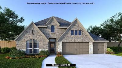 Pearland Single Family Home For Sale: 3124 Cactus Grove Lane