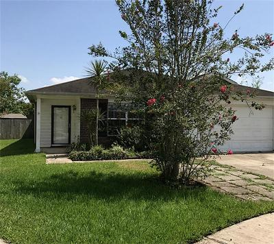 Pearland Single Family Home For Sale: 5404 McKinley Court