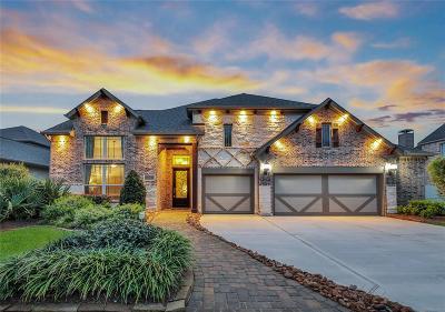 Conroe Single Family Home For Sale: 10482 Lake Palmetto Drive